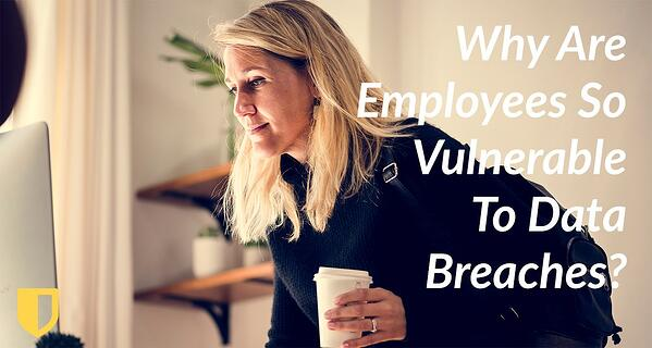 Why Are Employees So Vulnerable To Data Breaches?